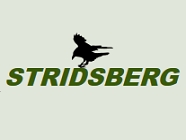 Stridsberg Engineering Logo