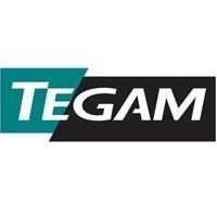TEGAM Logo