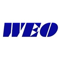 Wang Electro-Opto Corporation Logo