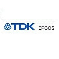 EPCOS AG Logo