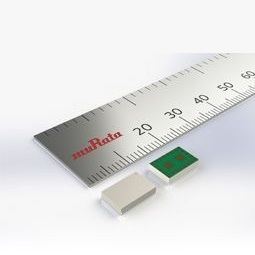 Type 1RM Image