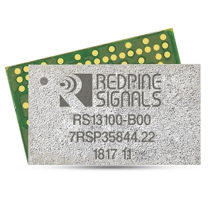 RS13100 Image