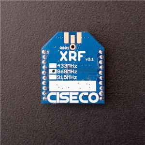 XRF Image