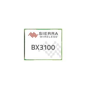 BX3100 Image