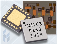 CMD163 Image