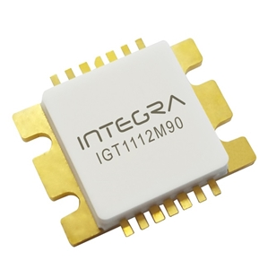 IGT1112M90 Image