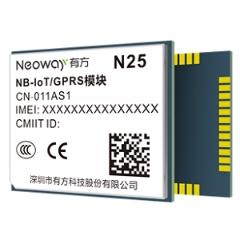 N25 Image